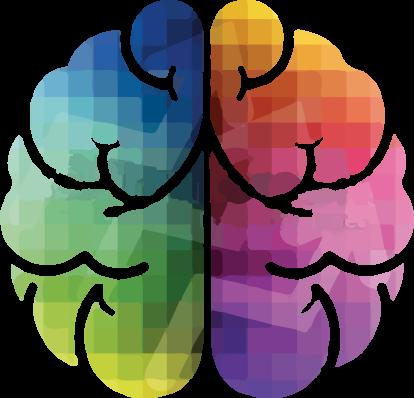 brain journey
